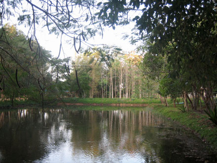 vipassana-prachinburi-lake